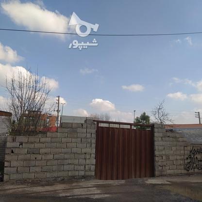 فروش زمین مسکونی 150 متر در آمل در گروه خرید و فروش املاک در مازندران در شیپور-عکس1