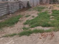 فروش فوری زمین مسکونی 281 متر در رستمکلای بهشهر در شیپور-عکس کوچک