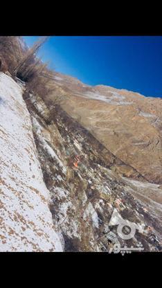 فروش زمین مسکونی 475 متر در لاریجان امیری امل  در گروه خرید و فروش املاک در مازندران در شیپور-عکس1