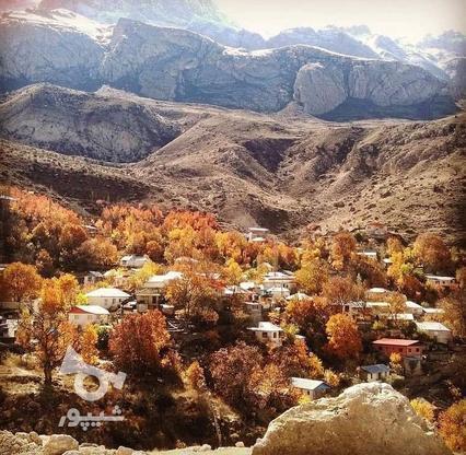 فروش زمین مسکونی 475 متر در لاریجان امیری امل  در گروه خرید و فروش املاک در مازندران در شیپور-عکس5