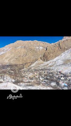 فروش زمین مسکونی 475 متر در لاریجان امیری امل  در گروه خرید و فروش املاک در مازندران در شیپور-عکس2