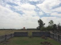 فروش زمین 250 متری در جاده-پلاژ در شیپور-عکس کوچک