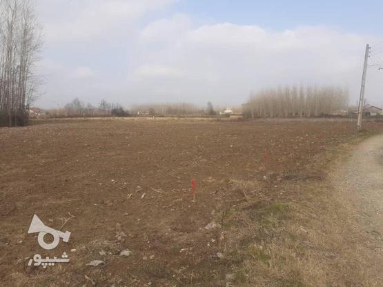 فروش زمین مسکونی 376 متر در صومعه سرا در گروه خرید و فروش املاک در گیلان در شیپور-عکس2