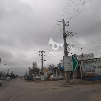 فروش زمین خانه  باغی 1100 دراز محله کیلومتر 3ساری در گروه خرید و فروش املاک در مازندران در شیپور-عکس9