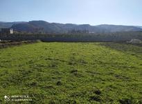 فروش زمین کشاورزی 3700 متر در بهشهر در شیپور-عکس کوچک
