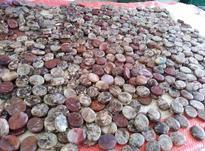 سنگ نگین عقیق جاسپر شجر دریایی  در شیپور-عکس کوچک