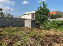 فروش زمین 500متر قابل تفکیک به دوقواره سنددار در شیپور-عکس کوچک