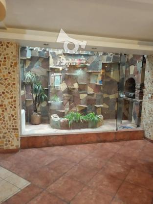 فروش آپارتمان 90 متر در نیاوران در گروه خرید و فروش املاک در تهران در شیپور-عکس4