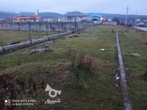 فروش زمین مسکونی 300 متر در رضوانشهر در گروه خرید و فروش املاک در گیلان در شیپور-عکس1