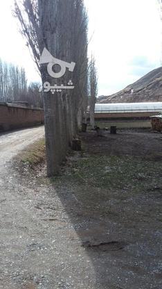 زمین شهرکی تازه ساخت 500 متری در گروه خرید و فروش املاک در البرز در شیپور-عکس1