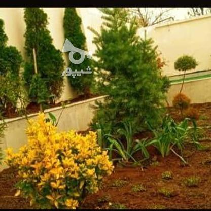 ویلا باغ مدرن 250متری با پروانه ساخت در جاده کلوده در گروه خرید و فروش املاک در مازندران در شیپور-عکس7