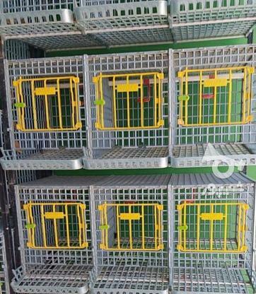 قفس مرغ تخمگزار  در گروه خرید و فروش صنعتی، اداری و تجاری در آذربایجان شرقی در شیپور-عکس2