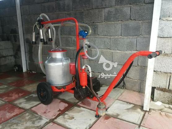 شیردوش تک واحده در گروه خرید و فروش صنعتی، اداری و تجاری در مازندران در شیپور-عکس5
