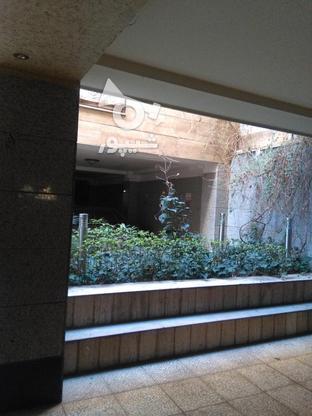 فروش 9غربی طبقه دوم 58 متر  در گروه خرید و فروش املاک در تهران در شیپور-عکس6