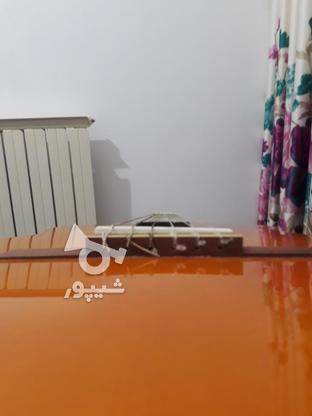 گیتار یاماهاc70در حد نو کار نخورده در گروه خرید و فروش ورزش فرهنگ فراغت در مازندران در شیپور-عکس2