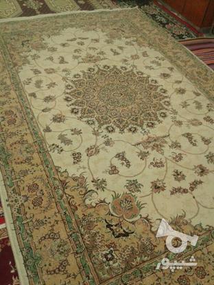 فرش شش متر در گروه خرید و فروش لوازم خانگی در اردبیل در شیپور-عکس2