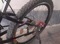 دوچرخه ماکسیما صحیح و سالم  در شیپور-عکس کوچک
