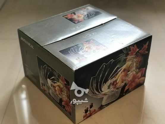 میوه خوری پایه دار سوگا ژاپن  در گروه خرید و فروش لوازم خانگی در البرز در شیپور-عکس2