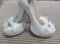 کفش مجلسی بسیار شیک در شیپور-عکس کوچک