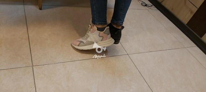 کفش ادیداس سایز 37 الی 38 در گروه خرید و فروش لوازم شخصی در همدان در شیپور-عکس1