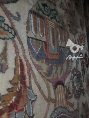فرش دستبافت 9 متری در گروه خرید و فروش لوازم خانگی در خراسان رضوی در شیپور-عکس2