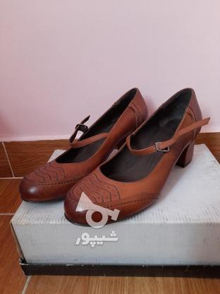 کفش های زنانه پاشنه 5 سانتی چرم طبیعی در گروه خرید و فروش لوازم شخصی در تهران در شیپور-عکس4