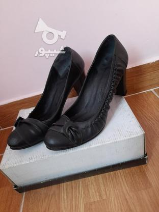 کفش های زنانه پاشنه 5 سانتی چرم طبیعی در گروه خرید و فروش لوازم شخصی در تهران در شیپور-عکس2