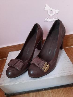 کفش های زنانه پاشنه 5 سانتی چرم طبیعی در گروه خرید و فروش لوازم شخصی در تهران در شیپور-عکس3