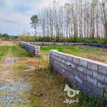 فروش زمین مسکونی 252 متر در لنگرود در گروه خرید و فروش املاک در گیلان در شیپور-عکس1