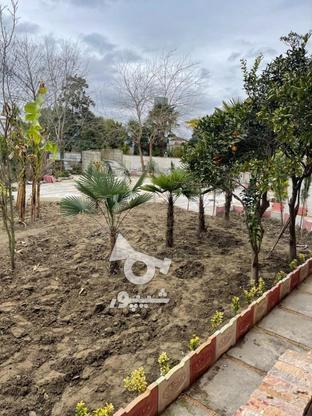 فروش ویلا 200 متر در تنکابن در گروه خرید و فروش املاک در مازندران در شیپور-عکس3