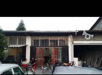 فروش تجاری و مغازه 200 متر در فریدونکنار در شیپور-عکس کوچک