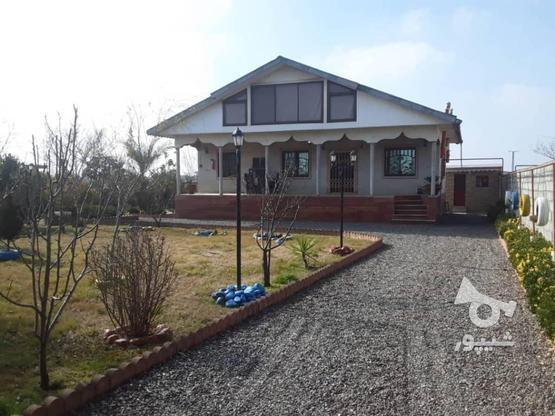 فروش ویلا 120 متر بنا 1350متر زمین در منطقه ساحلی دستک در گروه خرید و فروش املاک در گیلان در شیپور-عکس7