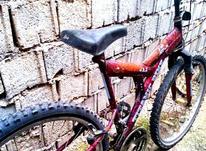 دوچرخه سالم 26حرفه ای در شیپور-عکس کوچک
