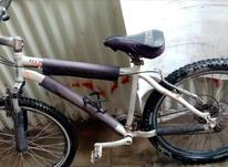 دوچرخه گالانت 26  در شیپور-عکس کوچک