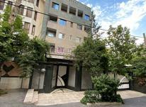 فروش آپارتمان 350 متر در الهیه در شیپور-عکس کوچک