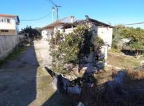 فروش زمین مسکونی 700 متری در روستای کروا قائم شهر در شیپور-عکس کوچک