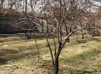 فروش زمین 400 متر در تهران دشت  در شیپور-عکس کوچک