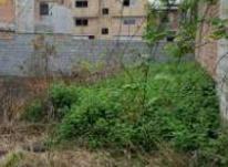 فروش فوری زمین مسکونی 268 متری با سند در کوچه فجر  در شیپور-عکس کوچک