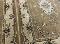 2 تخته فرش 6 متری زمرد مشهد 700 شانه در شیپور-عکس کوچک